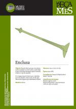 Enclusa